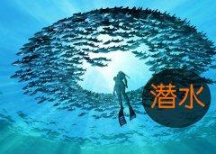 潜水运动-拓展训练项目